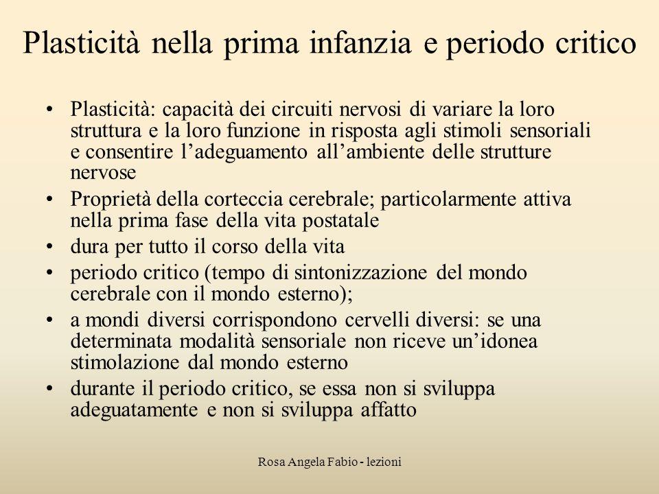 Rosa Angela Fabio - lezioni Plasticità nella prima infanzia e periodo critico Plasticità: capacità dei circuiti nervosi di variare la loro struttura e