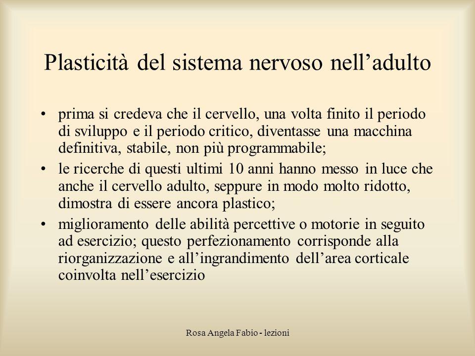 Rosa Angela Fabio - lezioni Plasticità del sistema nervoso nell'adulto prima si credeva che il cervello, una volta finito il periodo di sviluppo e il