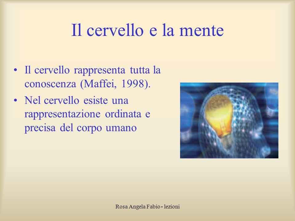 Rosa Angela Fabio - lezioni Il cervello e la mente Il cervello rappresenta tutta la conoscenza (Maffei, 1998). Nel cervello esiste una rappresentazion