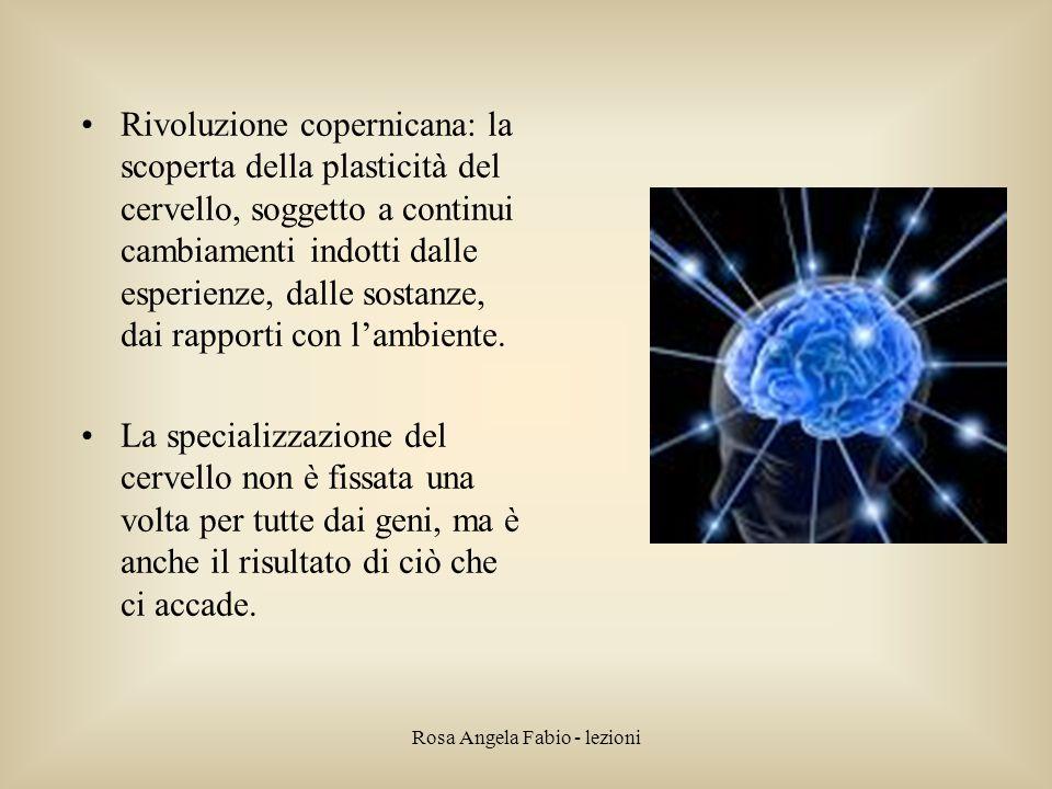Rosa Angela Fabio - lezioni Rivoluzione copernicana: la scoperta della plasticità del cervello, soggetto a continui cambiamenti indotti dalle esperien