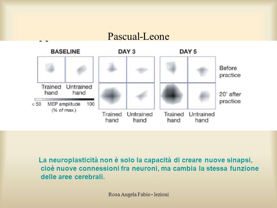 Rosa Angela Fabio - lezioni Pascual-Leone La neuroplasticità non è solo la capacità di creare nuove sinapsi, cioè nuove connessioni fra neuroni, ma ca