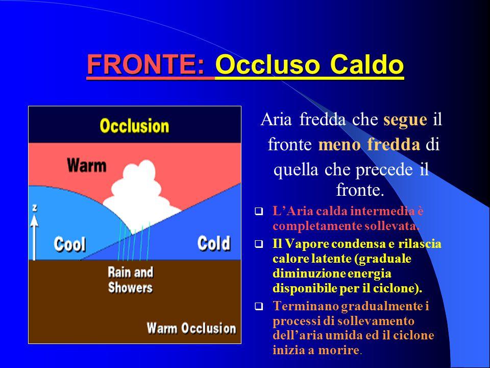 FRONTE: Occluso Fronte Freddo più veloce di Fronte Caldo FF raggiunge FC Si forma Fronte Occluso L'Occlusione può essere a carattere calda o occlusion