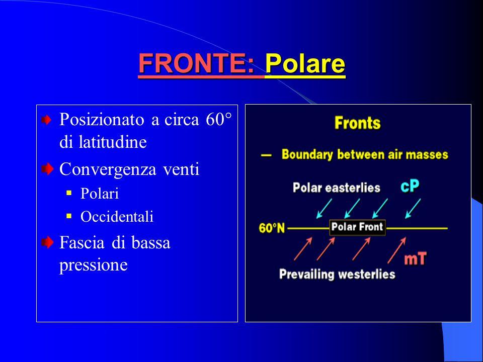 FRONTE: Occluso Freddo Aria fredda che segue il fronte più fredda di quella che precede il fronte  L'Aria calda intermedia è completamente sollevata.