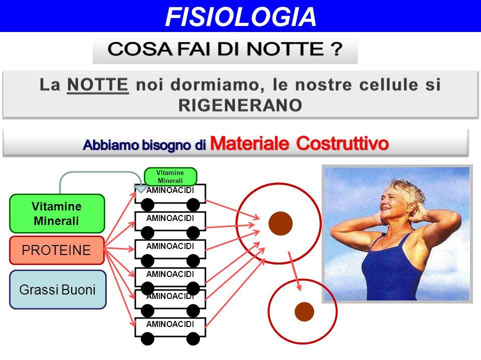 AMINOACIDI PROTEINE Grassi Buoni Vitamine Minerali Vitamine Minerali FISIOLOGIA