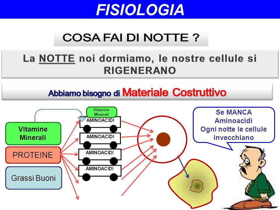 AMINOACIDI PROTEINE Grassi Buoni Vitamine Minerali Se MANCA Aminoacidi Ogni notte le cellule invecchiano Vitamine Minerali FISIOLOGIA