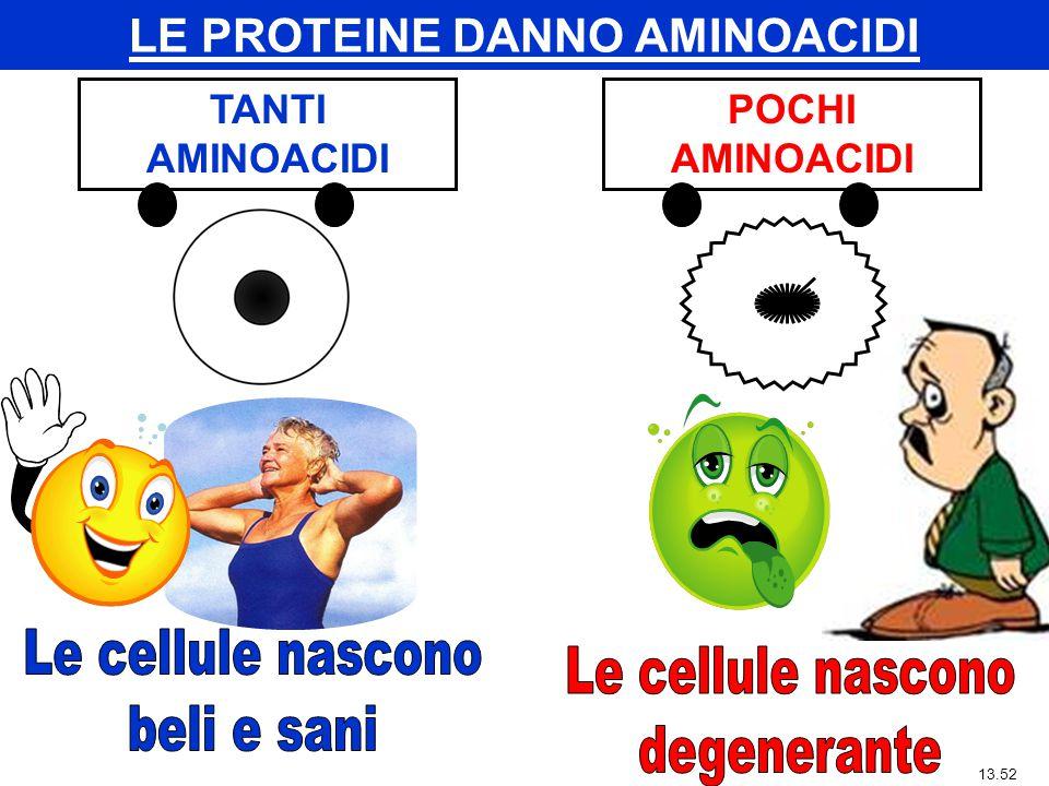 TANTI AMINOACIDI 13.54 POCHI AMINOACIDI LE PROTEINE DANNO AMINOACIDI