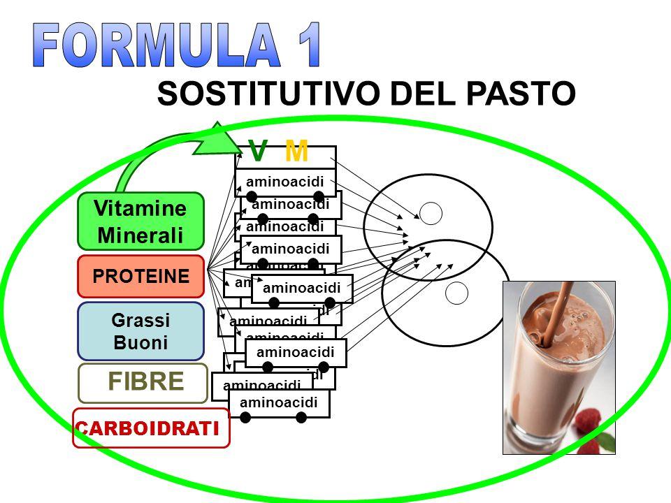 MV aminoacidi Vitamine Minerali PROTEINE Grassi Buoni FIBRE CARBOIDRATI SOSTITUTIVO DEL PASTO