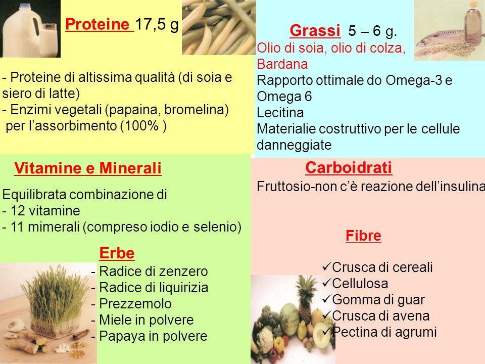 Proteine 17,5 g - Proteine di altissima qualità (di soia e siero di latte) - Enzimi vegetali (papaina, bromelina) per l'assorbimento (100% ) Grassi 5 – 6 g.