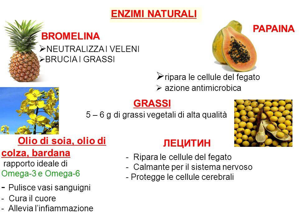 GRASSI Olio di soia, olio di colza, bardana rapporto ideale di Omega-3 e Omega-6 ЛЕЦИТИН 5 – 6 g di grassi vegetali di alta qualità - Pulisce vasi sanguigni - Cura il cuore - Allevia l'infiammazione - Ripara le cellule del fegato - Calmante per il sistema nervoso - Protegge le cellule cerebrali ENZIMI NATURALI BROMELINA  NEUTRALIZZA I VELENI  BRUCIA I GRASSI  ripara le cellule del fegato  azione antimicrobica PAPAINA