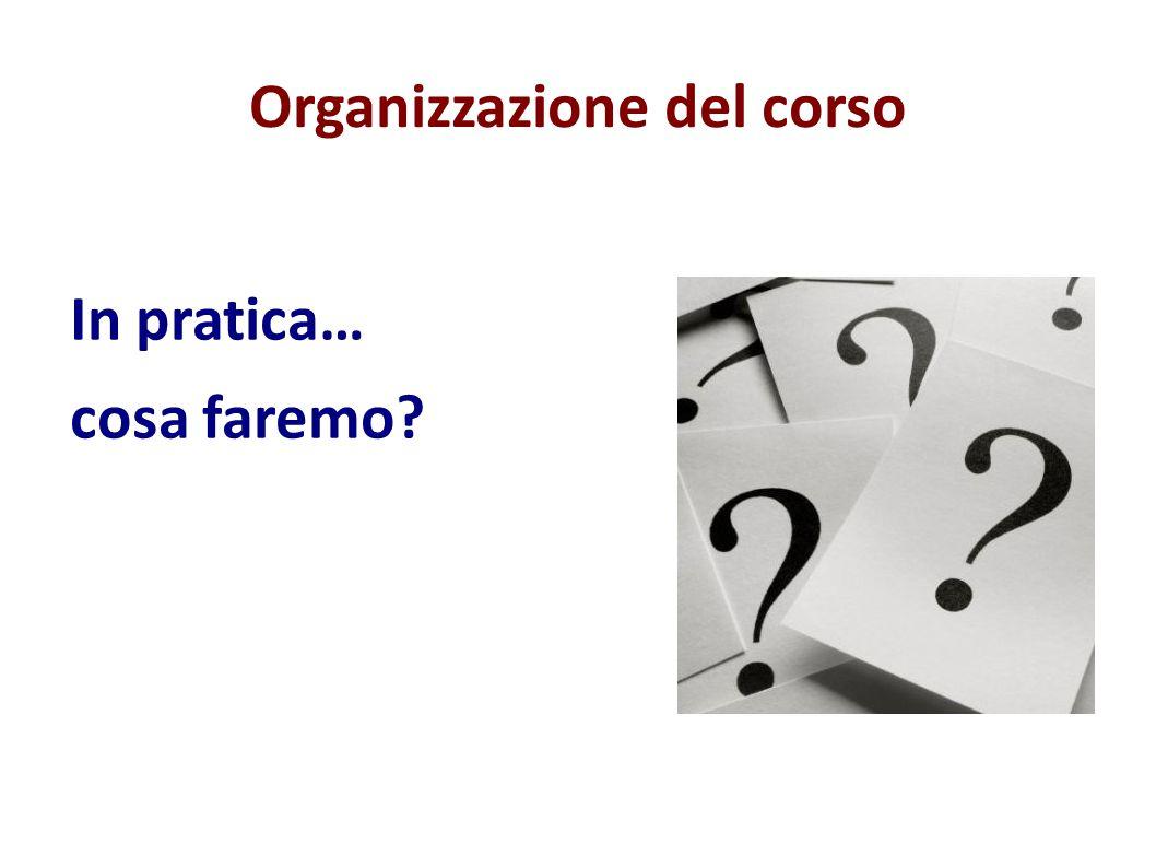 Organizzazione del corso In pratica… cosa faremo?