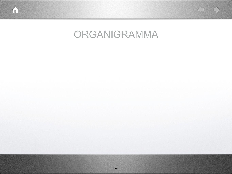 4 ORGANIGRAMMA
