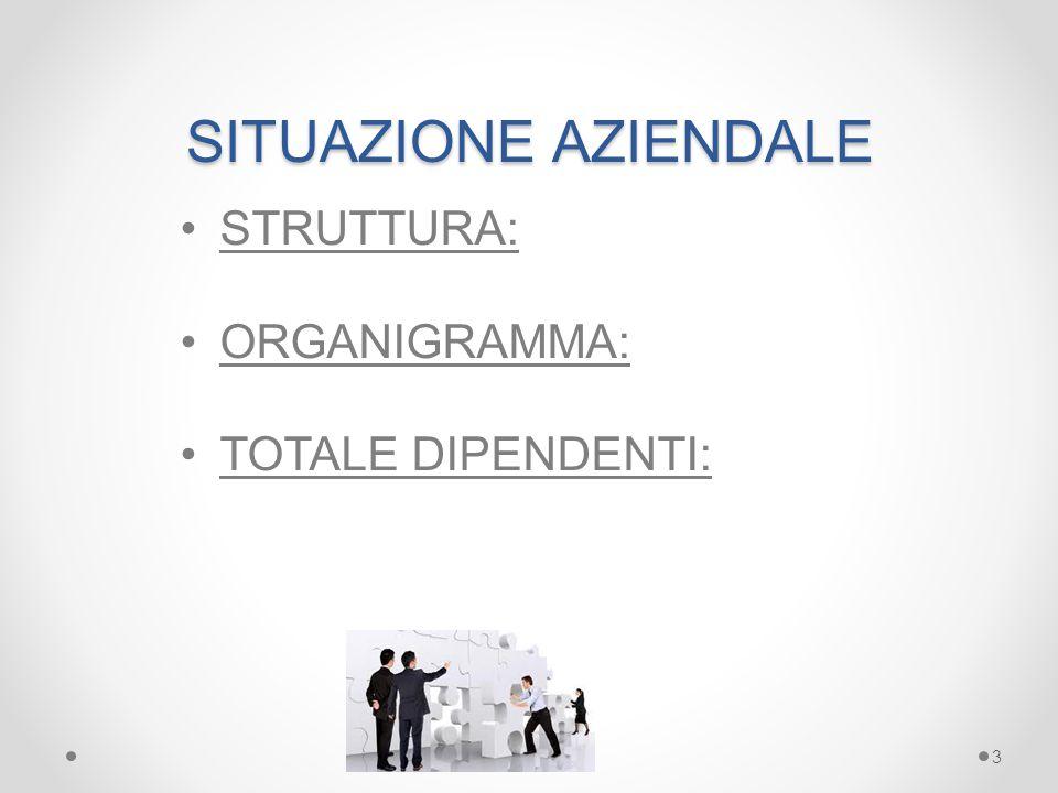 SITUAZIONE AZIENDALE STRUTTURA: ORGANIGRAMMA: TOTALE DIPENDENTI: 3