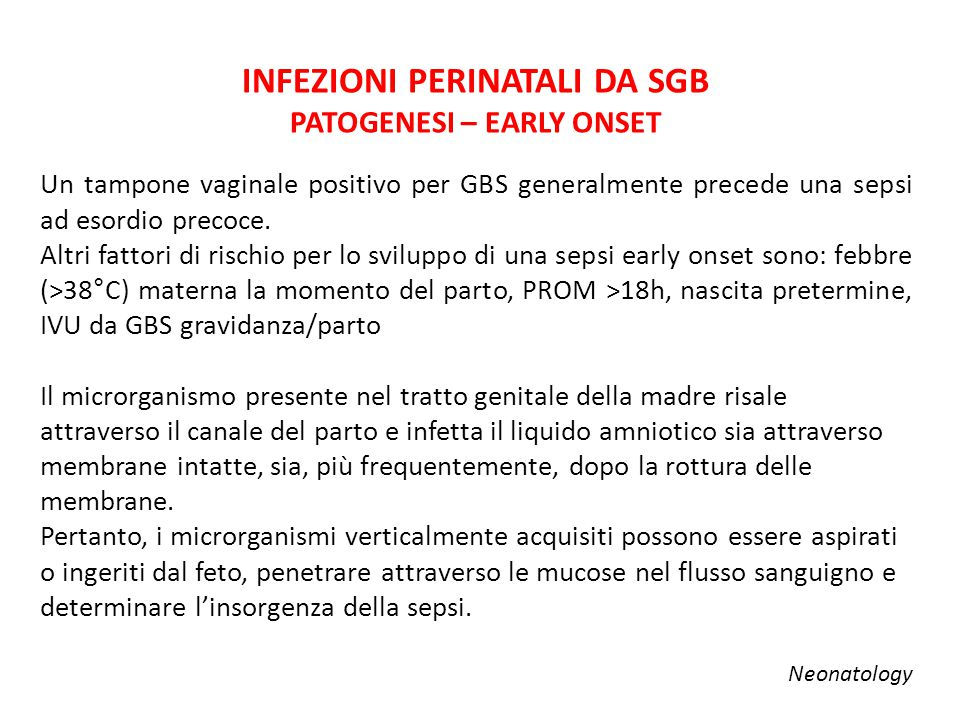 ≥37 SETTIMANE 0-7 gg 100 mg/kg/12h 30-36 SETTIMANE 0-7 gg 4,5 mg/kg/36h ≥8 gg 4 mg/kg/24h ≤29 SETTIMANE 0-7 gg 5 mg/kg/48h 8-28 gg 4 mg/kg/36h TRATTAMENTO -GENTAMICINA- ≥29 gg 4 mg/kg/24h
