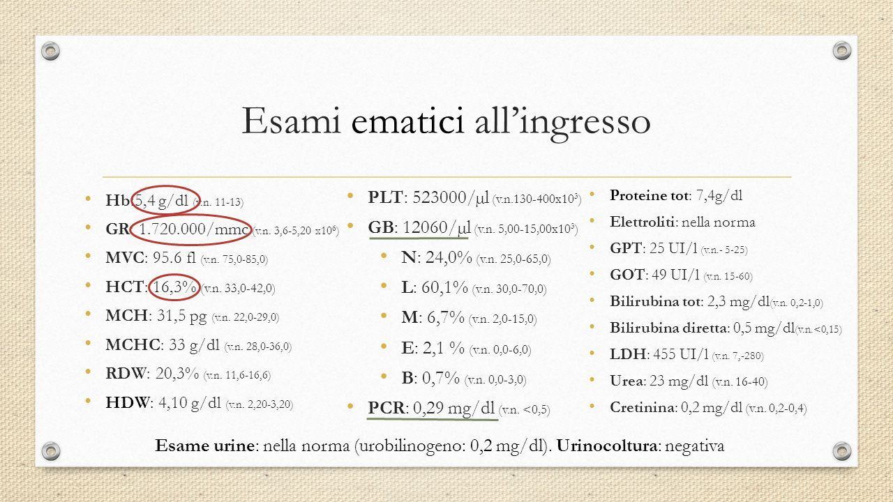 Casi segnalati 8-month-old infant with fever since the day before.