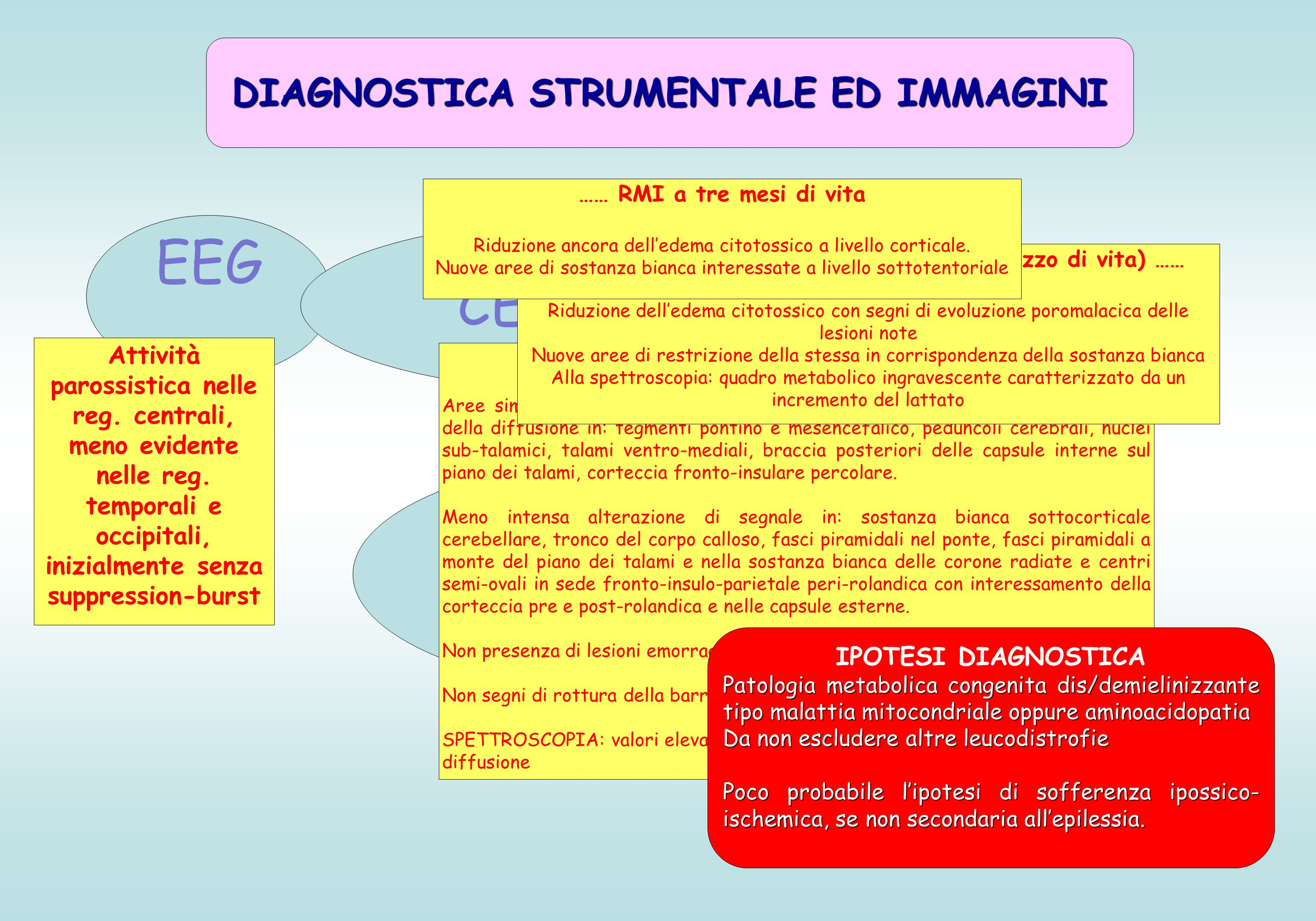 EEG Angio-RM RM in diffusione e spettroscopia ECOGRAFIA CEREBRALE DIAGNOSTICA STRUMENTALE ED IMMAGINI Attività parossistica nelle reg.
