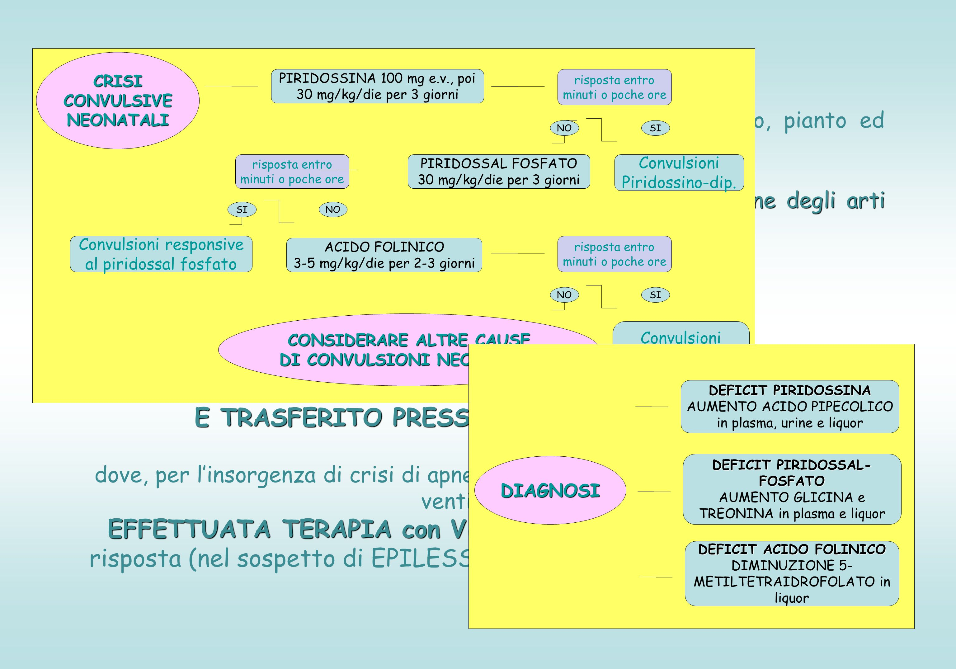 MALATTIE MITOCONDRIALI Concordanti: -Evoluzione clinica acuta con quadro da deficit energetico -Aumento CK -Iperlatticidemia -Reperto di neuroimmagini: coinvolgimento cerebellare, della sostanza grigia e talamo Discordanti: -Lattato su liquor solo lievemente aumentato anche se presente spiccata iperlatticidemia -Rapporto L/P in siero nella norma -Alla RM con spettroscopia: incremento del picco di lattato solo nelle aree interessate dalle lesioni ma non nel restante parenchima -BIOPSIA MUSCOLARE per studio subunità catena respiratoria, PDH, ATP-sintasi: nella norma SOSPETTO DIAGNOSTICO MALATTIA DI LEIGH Cinica + Reperto autoptico: sospetto di MALATTIA DI LEIGH