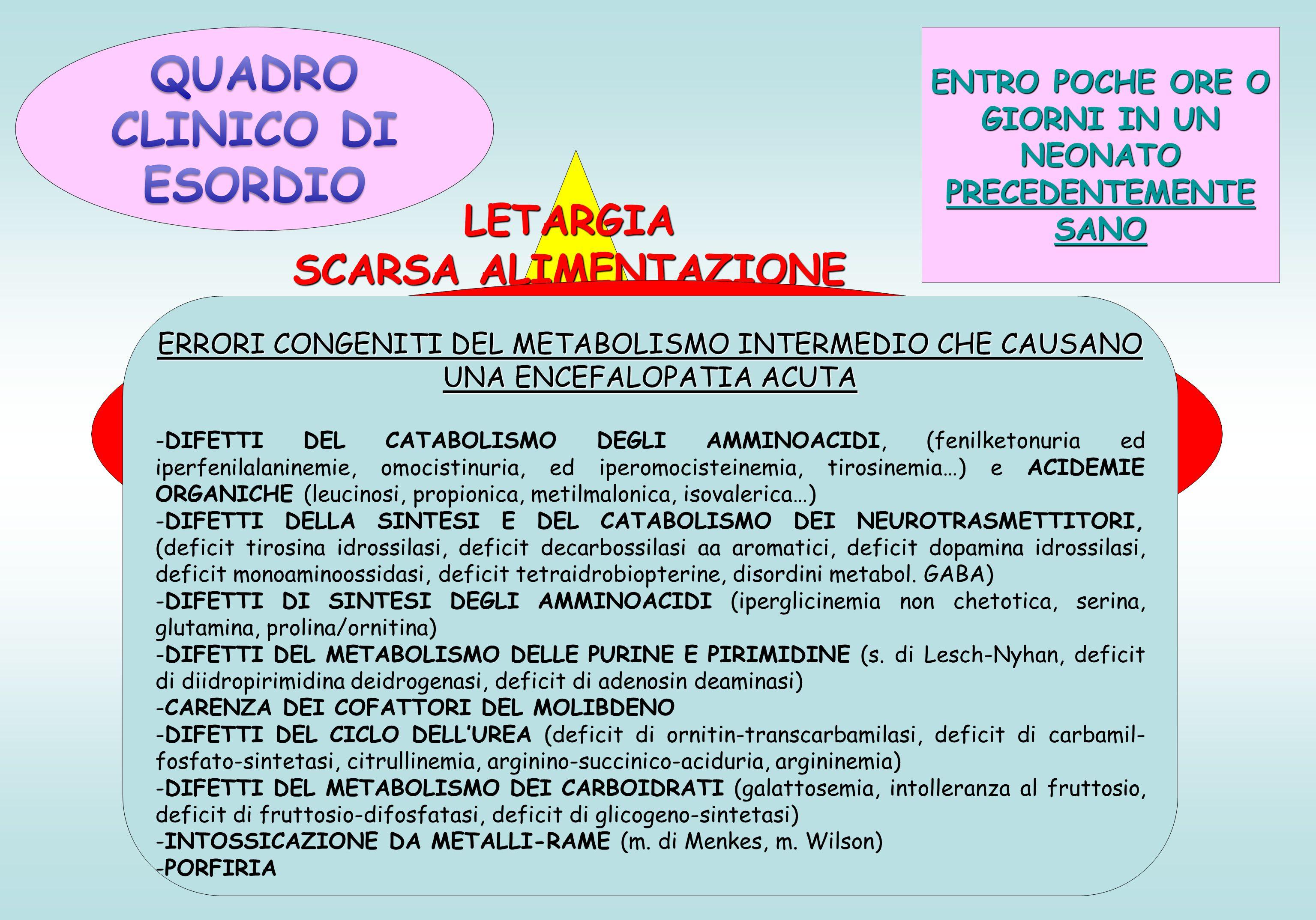 ENTRO POCHE ORE O GIORNI IN UN NEONATO PRECEDENTEMENTE SANO LETARGIA SCARSA ALIMENTAZIONE VOMITO CONVULSIONI (spasmi, mioclonie..) RESPIRAZIONE ANOMALA ACIDOSI METABOLICA CON TACHPIPNEA IPO-IPERTONO, DISTONIE POSTURA IN OPISTOTONO CRISI DI APNEA COMA QUADRO ACUTO DI INTOSSICAZIONE o EPISODICO neonatale o prima infanzia ERRORI CONGENITI DEL METABOLISMO INTERMEDIO CHE CAUSANO UNA ENCEFALOPATIA ACUTA -DIFETTI DEL CATABOLISMO DEGLI AMMINOACIDI, (fenilketonuria ed iperfenilalaninemie, omocistinuria, ed iperomocisteinemia, tirosinemia…) e ACIDEMIE ORGANICHE (leucinosi, propionica, metilmalonica, isovalerica…) -DIFETTI DELLA SINTESI E DEL CATABOLISMO DEI NEUROTRASMETTITORI, (deficit tirosina idrossilasi, deficit decarbossilasi aa aromatici, deficit dopamina idrossilasi, deficit monoaminoossidasi, deficit tetraidrobiopterine, disordini metabol.