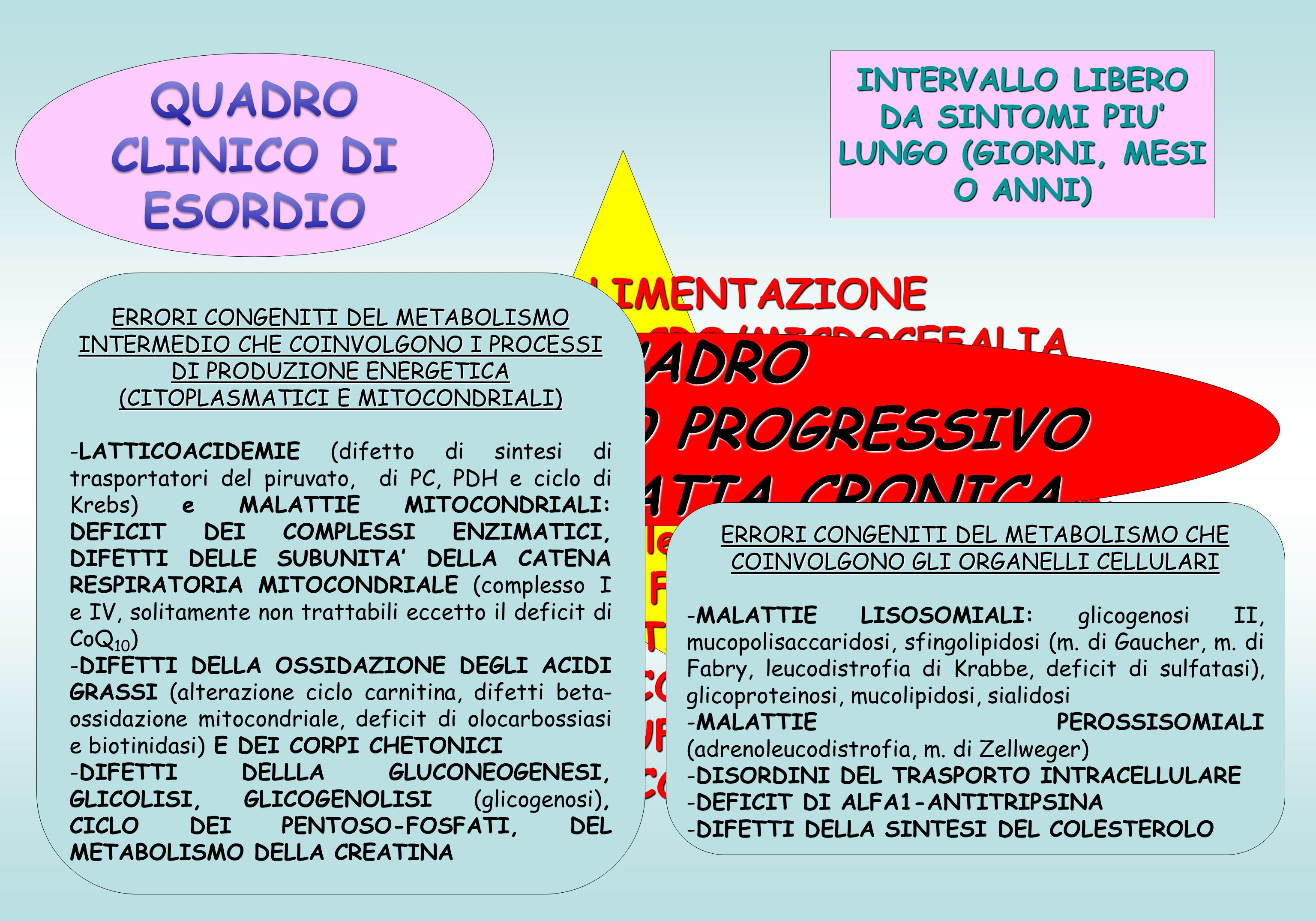 INTERVALLO LIBERO DA SINTOMI PIU' LUNGO (GIORNI, MESI O ANNI) SCARSA ALIMENTAZIONE CONVULSIONI, MACRO/MICROCEFALIA RITADRO NEUROMOTORIO E DEL LINGUAGGIO DEBOLEZZA MUSCOLARE ALTERAZIONI MOTORIE (spasticità, atassia, iperreflessia…) SEGNI FOCALI INSUFFICIENZA EPATICA, EPATOMEGALIA ITTERO, COLESTASI CARDIOMIOPIA, INSUFFICIENZA CARDIACA DEFICIT DI ACCRESCIMENTO QUADRO SUBACUTO O PROGRESSIVO ENCEFALOPATIA CRONICA ERRORI CONGENITI DEL METABOLISMO INTERMEDIO CHE COINVOLGONO I PROCESSI DI PRODUZIONE ENERGETICA (CITOPLASMATICI E MITOCONDRIALI) -LATTICOACIDEMIE (difetto di sintesi di trasportatori del piruvato, di PC, PDH e ciclo di Krebs) e MALATTIE MITOCONDRIALI: DEFICIT DEI COMPLESSI ENZIMATICI, DIFETTI DELLE SUBUNITA' DELLA CATENA RESPIRATORIA MITOCONDRIALE (complesso I e IV, solitamente non trattabili eccetto il deficit di CoQ 10 ) -DIFETTI DELLA OSSIDAZIONE DEGLI ACIDI GRASSI (alterazione ciclo carnitina, difetti beta- ossidazione mitocondriale, deficit di olocarbossiasi e biotinidasi) E DEI CORPI CHETONICI -DIFETTI DELLLA GLUCONEOGENESI, GLICOLISI, GLICOGENOLISI (glicogenosi), CICLO DEI PENTOSO-FOSFATI, DEL METABOLISMO DELLA CREATINA ERRORI CONGENITI DEL METABOLISMO CHE COINVOLGONO GLI ORGANELLI CELLULARI -MALATTIE LISOSOMIALI: glicogenosi II, mucopolisaccaridosi, sfingolipidosi (m.