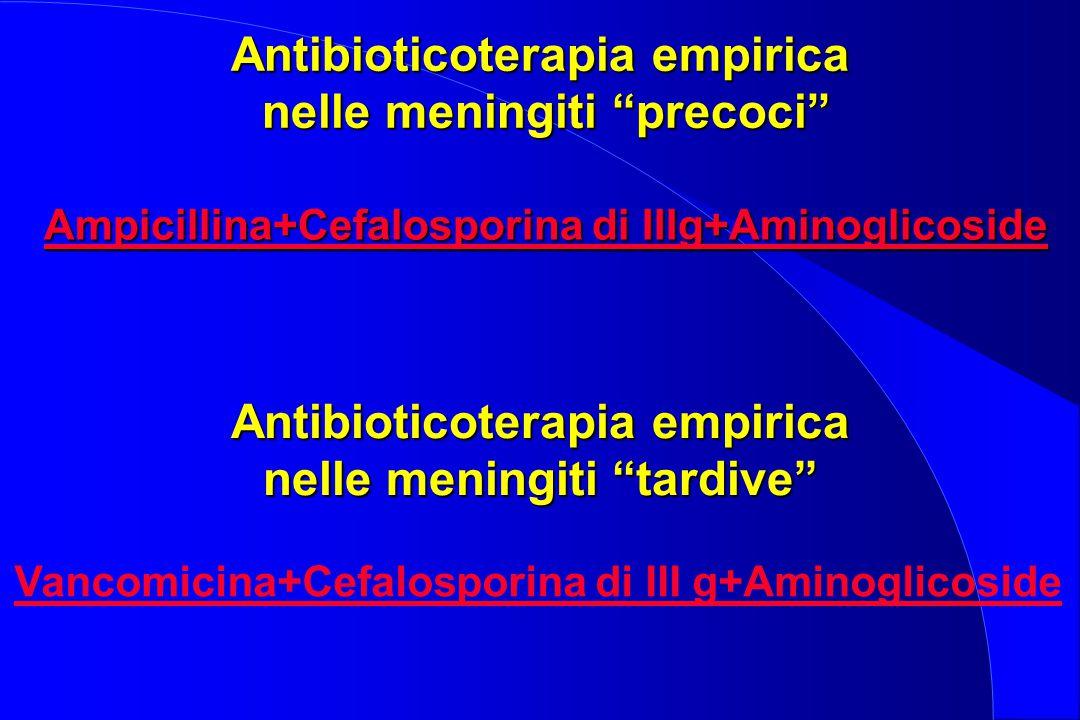 """Antibioticoterapia empirica nelle meningiti """"precoci"""" Ampicillina+Cefalosporina di IIIg+Aminoglicoside Antibioticoterapia empirica nelle meningiti """"ta"""