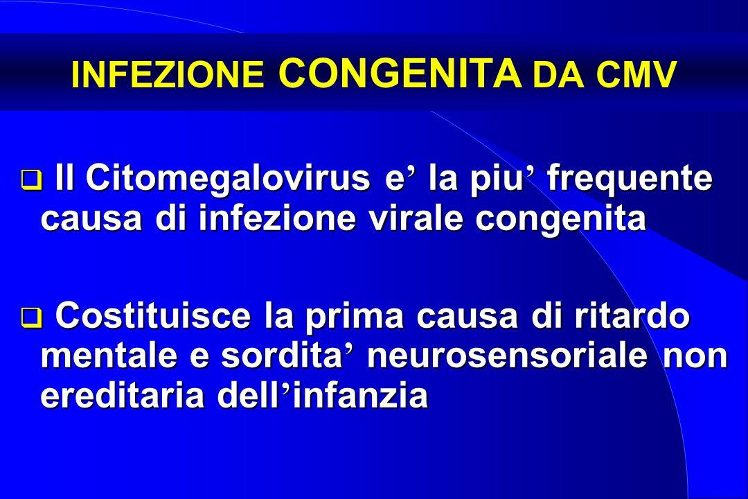 INFEZIONE CONGENITA DA CMV  Il Citomegalovirus e ' la piu ' frequente causa di infezione virale congenita  Costituisce la prima causa di ritardo men