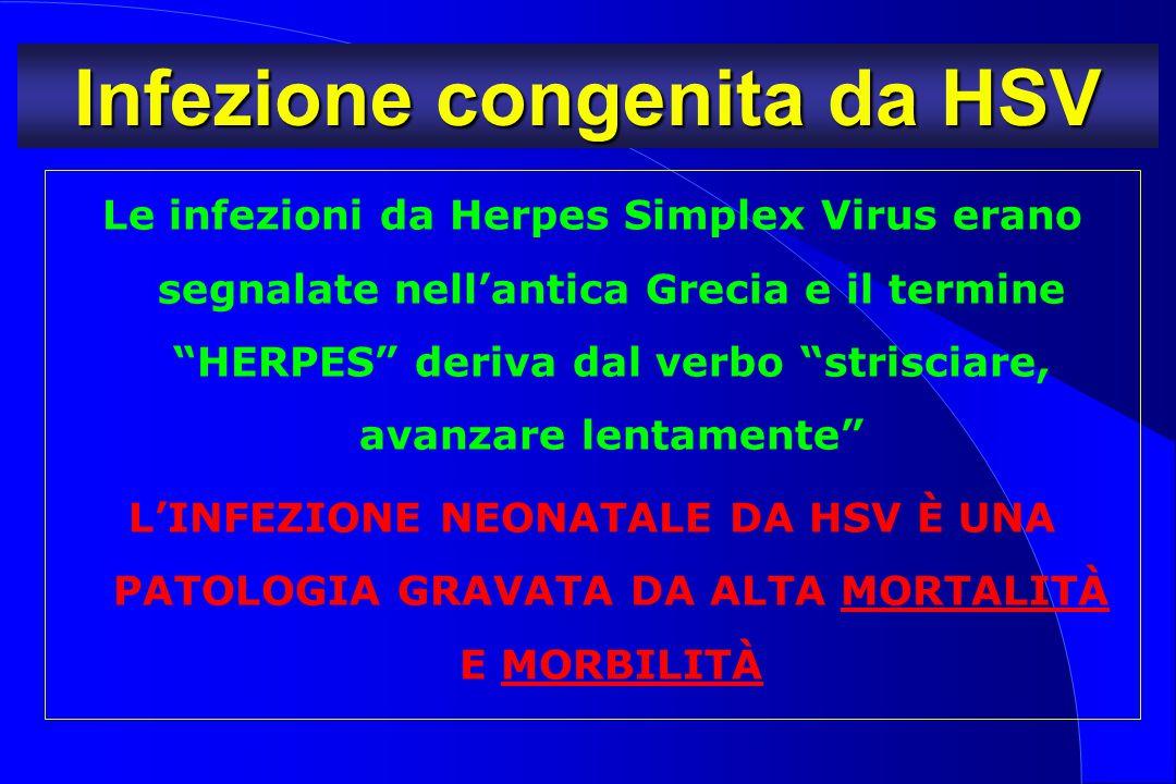 """Infezione congenita da HSV Le infezioni da Herpes Simplex Virus erano segnalate nell'antica Grecia e il termine """"HERPES"""" deriva dal verbo """"strisciare,"""