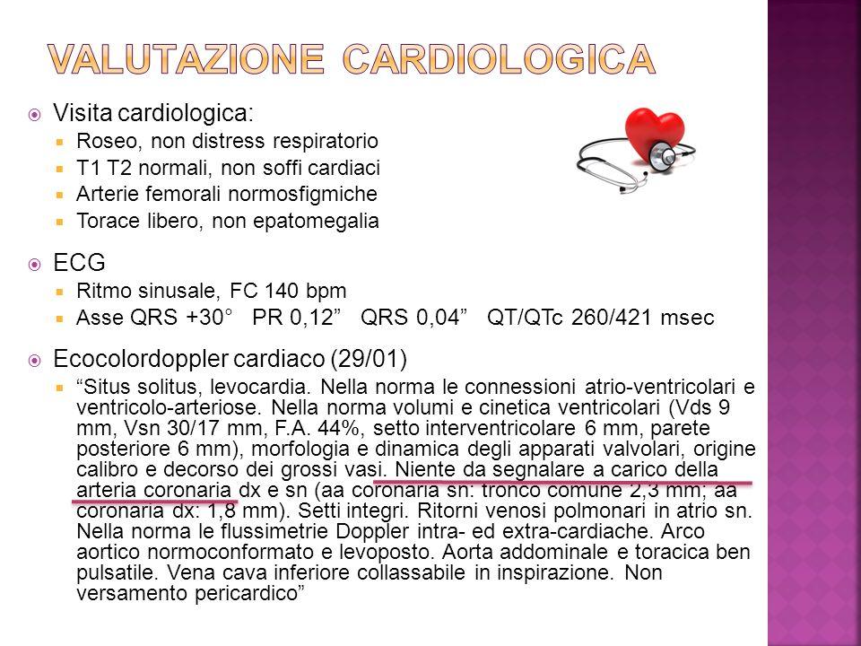  Visita cardiologica:  Roseo, non distress respiratorio  T1 T2 normali, non soffi cardiaci  Arterie femorali normosfigmiche  Torace libero, non e
