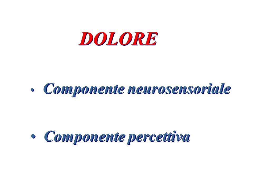 DOLORE Componente neurosensoriale Componente percettiva DOLORE Componente neurosensoriale Componente percettiva