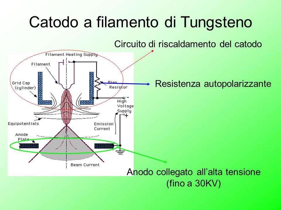 - + Catodo a filamento di Tungsteno Circuito di riscaldamento del catodo Anodo collegato all'alta tensione (fino a 30KV) Resistenza autopolarizzante