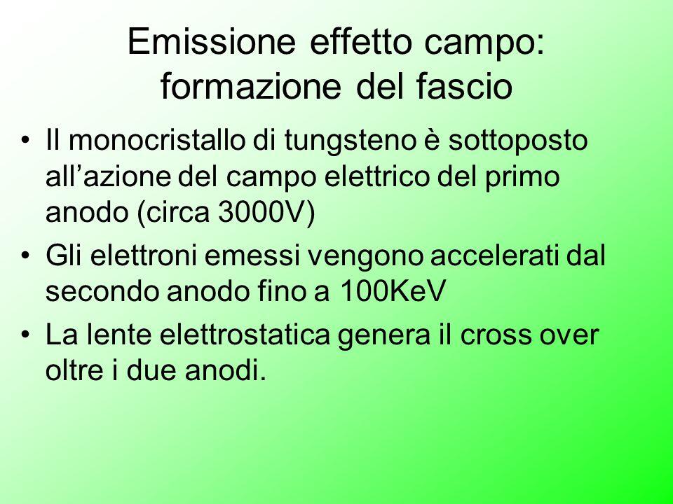 Emissione effetto campo: formazione del fascio Il monocristallo di tungsteno è sottoposto all'azione del campo elettrico del primo anodo (circa 3000V) Gli elettroni emessi vengono accelerati dal secondo anodo fino a 100KeV La lente elettrostatica genera il cross over oltre i due anodi.