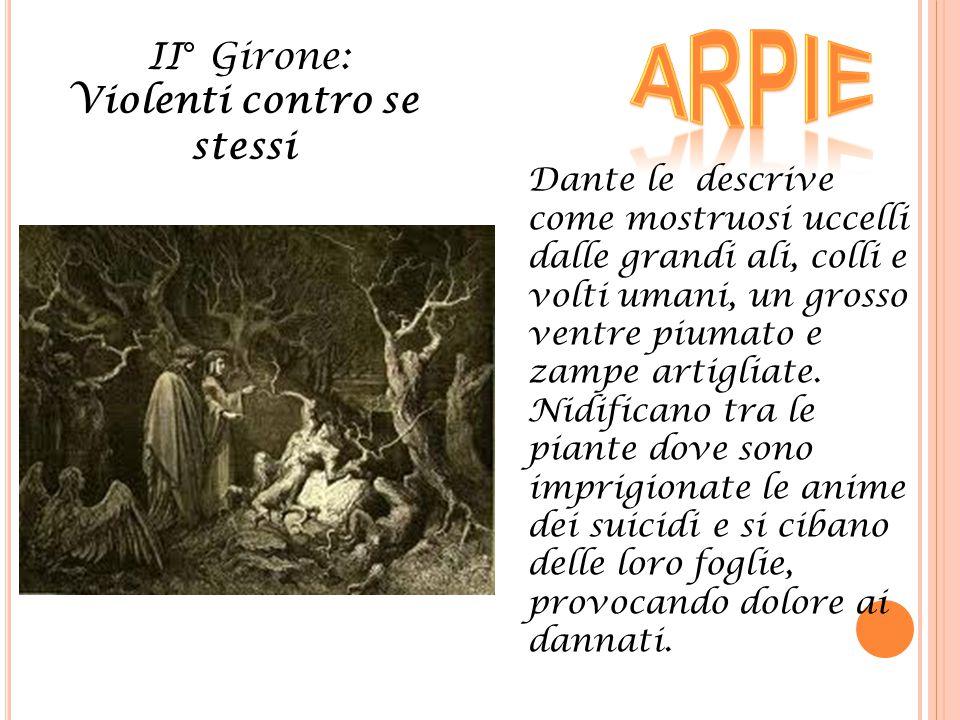 II° Girone: Violenti contro se stessi Dante le descrive come mostruosi uccelli dalle grandi ali, colli e volti umani, un grosso ventre piumato e zampe