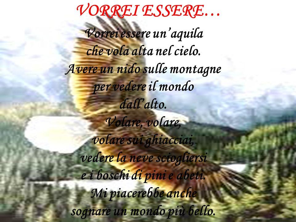 VORREI ESSERE… Vorrei essere un'aquila che vola alta nel cielo. Avere un nido sulle montagne per vedere il mondo dall'alto. Volare, volare, volare sui