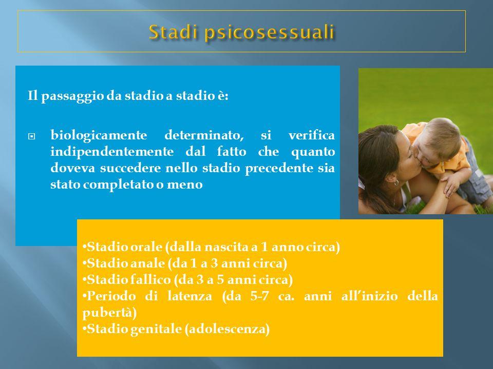 Il passaggio da stadio a stadio è:  biologicamente determinato, si verifica indipendentemente dal fatto che quanto doveva succedere nello stadio prec