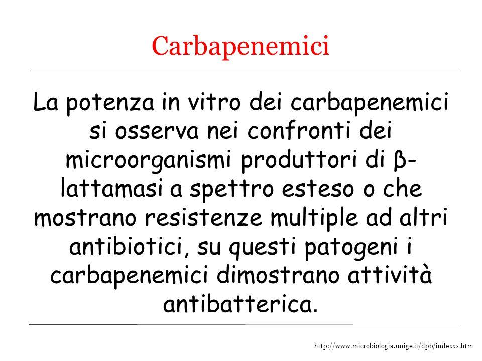 http://www.microbiologia.unige.it/dpb/indexxx.htm Carbapenemici La potenza in vitro dei carbapenemici si osserva nei confronti dei microorganismi prod