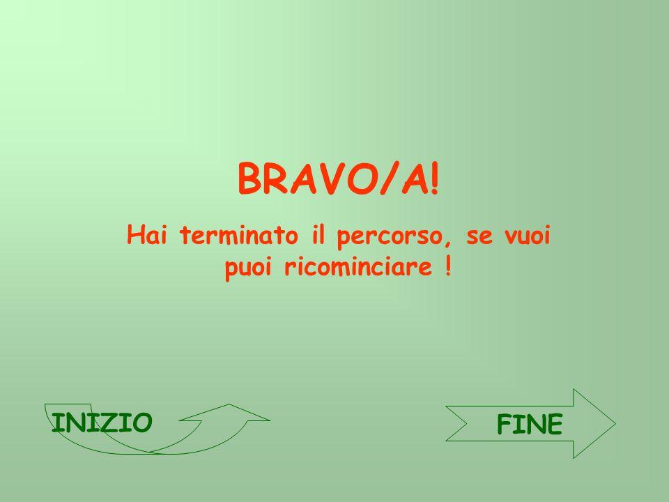 BRAVO/A! Hai terminato il percorso, se vuoi puoi ricominciare ! FINE INIZIO
