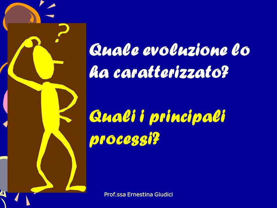 Prof.ssa Ernestina Giudici Quale evoluzione lo ha caratterizzato? Quali i principali processi?