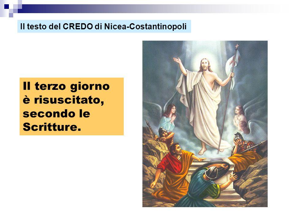 Il terzo giorno è risuscitato, secondo le Scritture. Il testo del CREDO di Nicea-Costantinopoli
