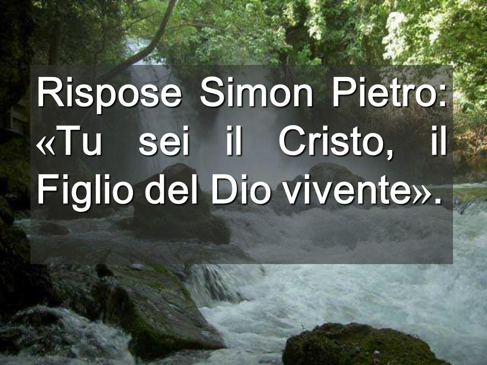 Rispose Simon Pietro: « Tu sei il Cristo, il Figlio del Dio vivente ».