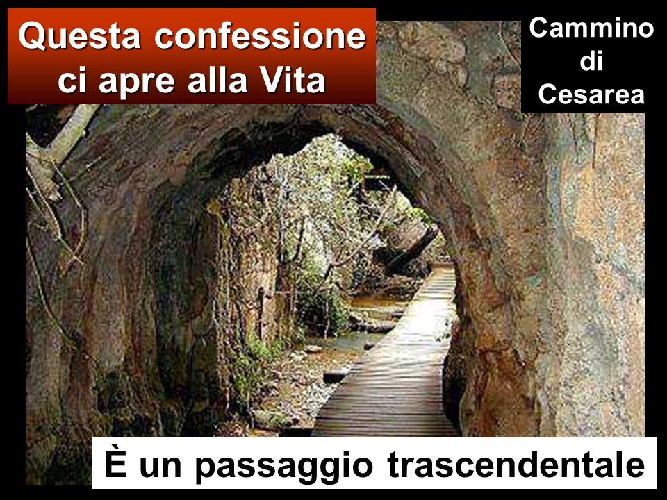 Questa confessione ci apre alla Vita È un passaggio trascendentale Cammino di Cesarea