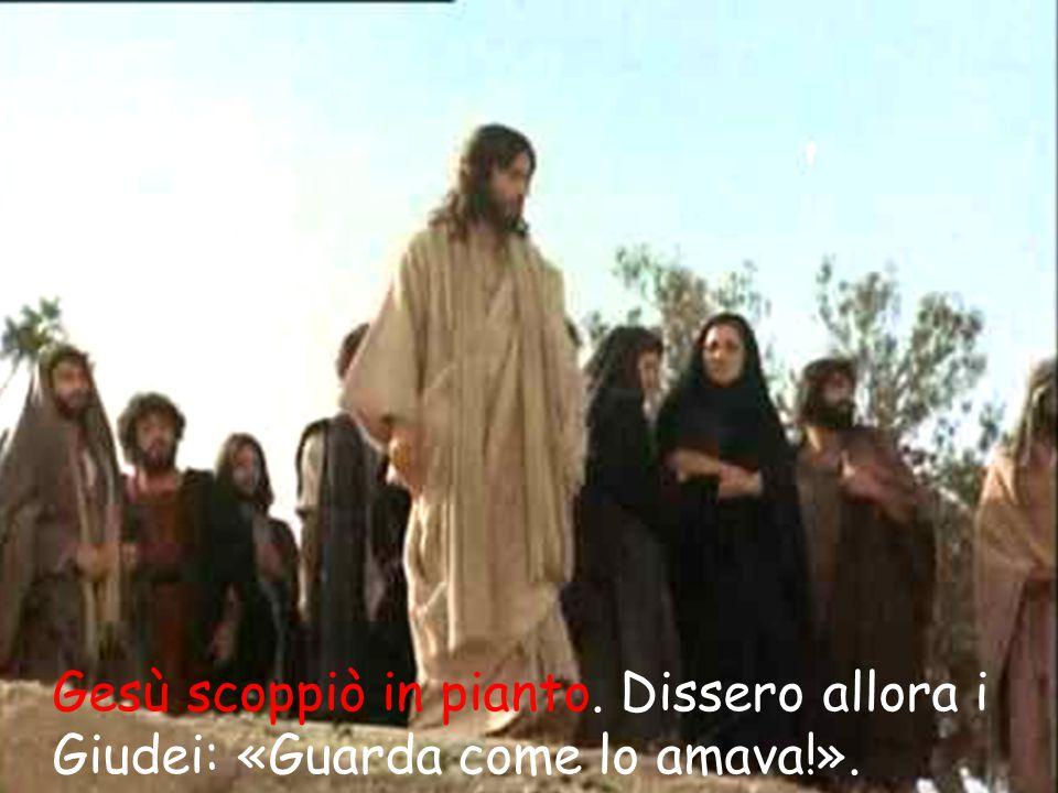 Gesù scoppiò in pianto. Dissero allora i Giudei: «Guarda come lo amava!».