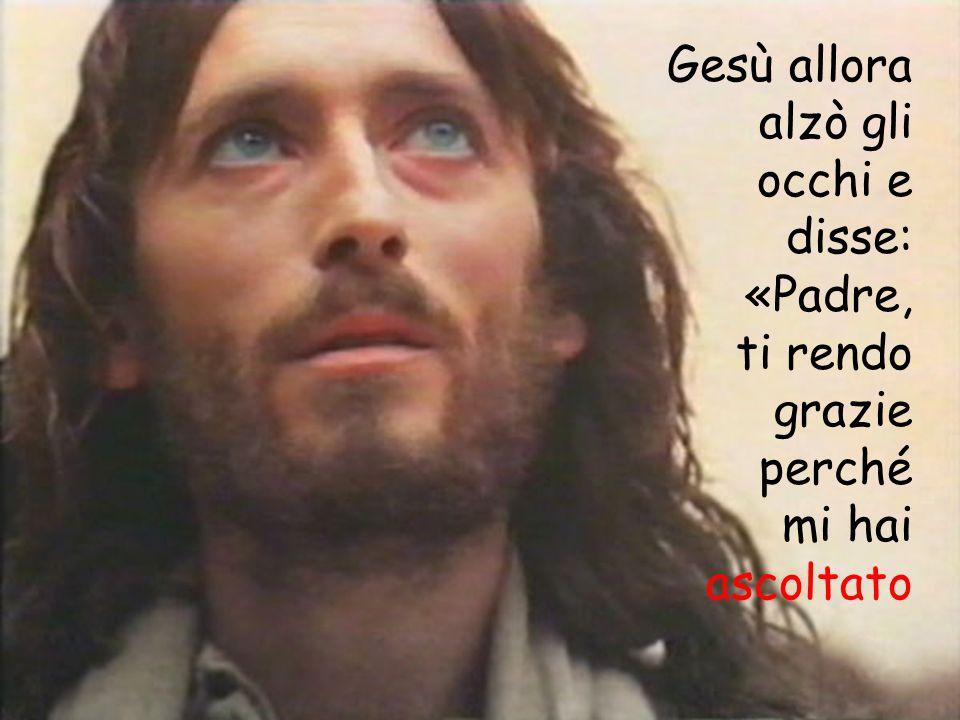Gesù allora alzò gli occhi e disse: «Padre, ti rendo grazie perché mi hai ascoltato