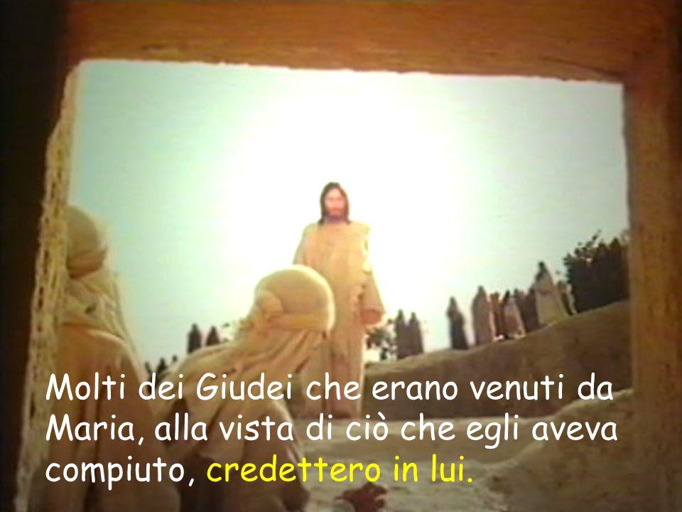 Molti dei Giudei che erano venuti da Maria, alla vista di ciò che egli aveva compiuto, credettero in lui.
