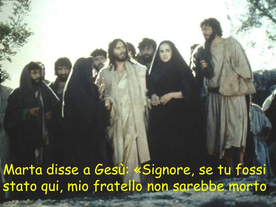 Marta disse a Gesù: «Signore, se tu fossi stato qui, mio fratello non sarebbe morto !