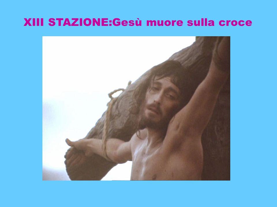 XIII STAZIONE:Gesù muore sulla croce