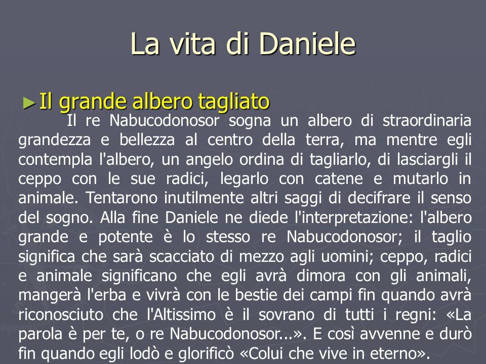 La vita di Daniele ► Il grande albero tagliato Il re Nabucodonosor sogna un albero di straordinaria grandezza e bellezza al centro della terra, ma men