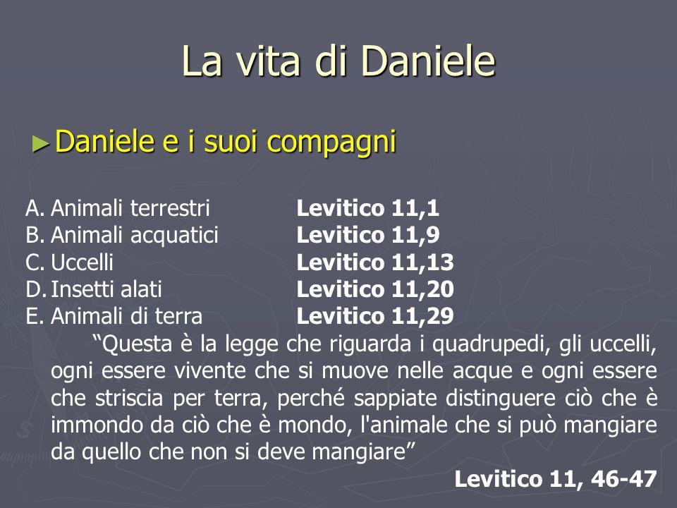 La vita di Daniele ► Daniele e i suoi compagni A.Animali terrestriLevitico 11,1 B.Animali acquaticiLevitico 11,9 C.UccelliLevitico 11,13 D.Insetti ala