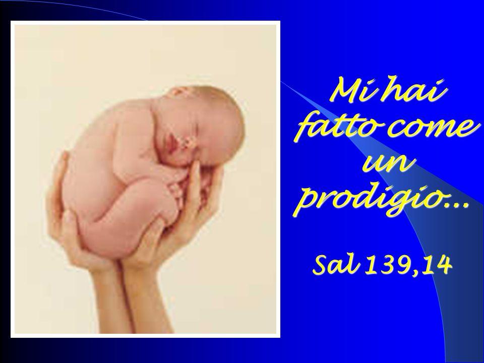 Mi hai fatto come un prodigio... Sal 139,14