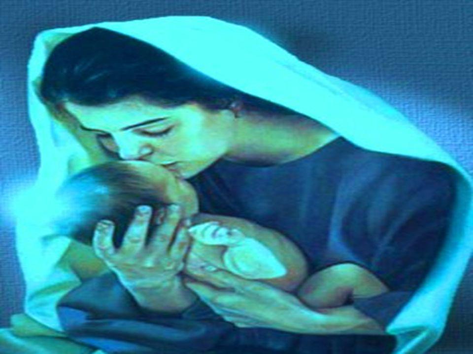 Che Dio nasca nell'Iraq martoriato Che Gesù rinasca fra le macerie di terremoti e Tsumani Che rinasca nei cuori di milioni di bambini sfruttati, viole