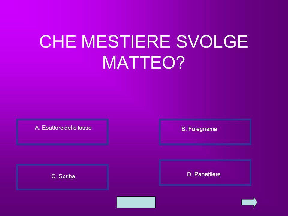 CHE MESTIERE SVOLGE MATTEO? A. Esattore delle tasse B. Falegname C. Scriba D. Panettiere