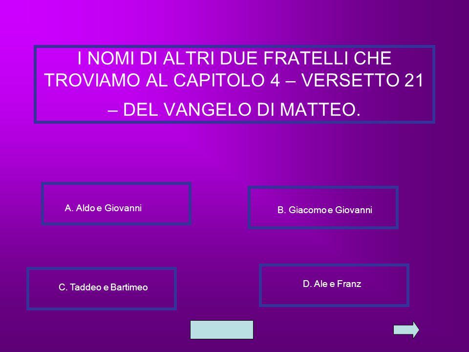 I NOMI DI ALTRI DUE FRATELLI CHE TROVIAMO AL CAPITOLO 4 – VERSETTO 21 – DEL VANGELO DI MATTEO. A. Aldo e Giovanni B. Giacomo e Giovanni C. Taddeo e Ba