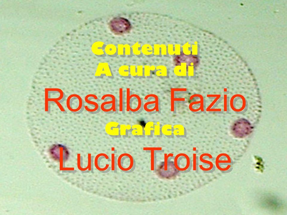 Contenuti A cura di Rosalba Fazio Grafica Lucio Troise Contenuti A cura di Rosalba Fazio Grafica Lucio Troise